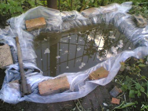Самодельный пруд
