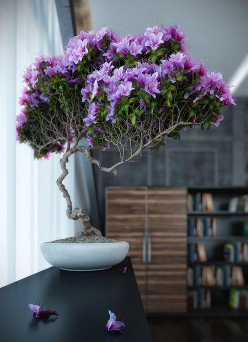 Растения в интерьере - красивые фото4