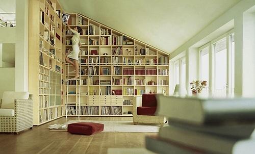 Biblioteka v dome3